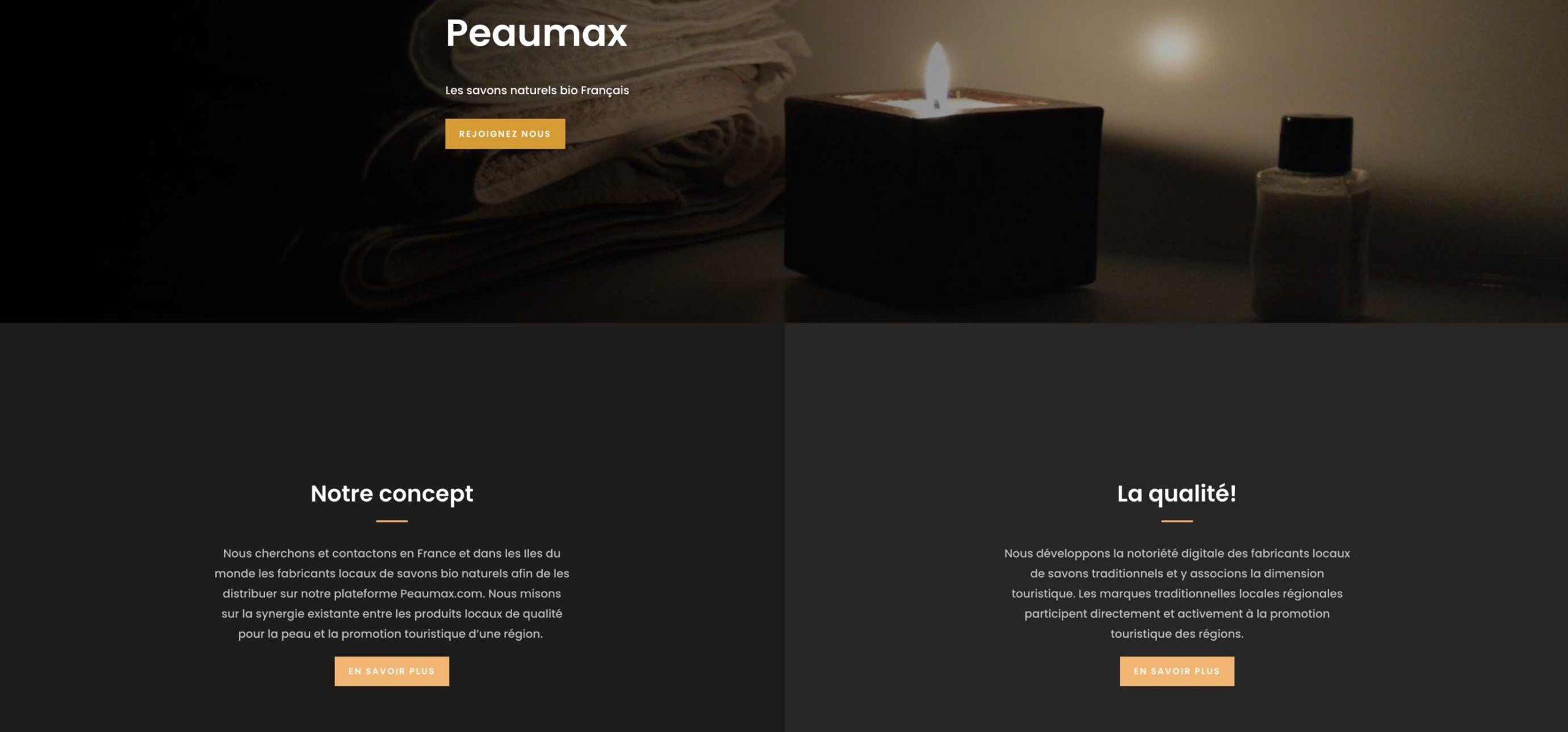 peaumax-web-zone-web-projet